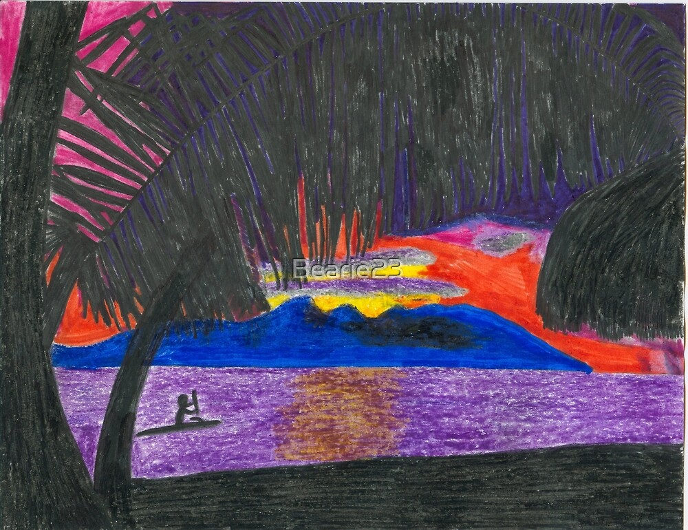 Hawaiian Sunset by Bearie23