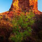 Green Tree Red Rock by Ralph Goldsmith