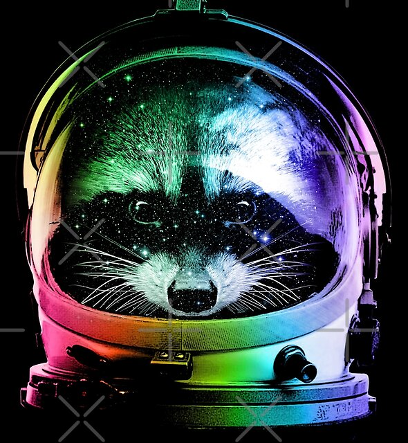 Astronaut Raccoon by clingcling