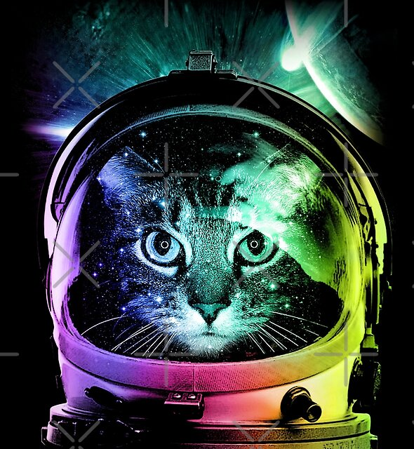 Astronaut Cat V.II by clingcling