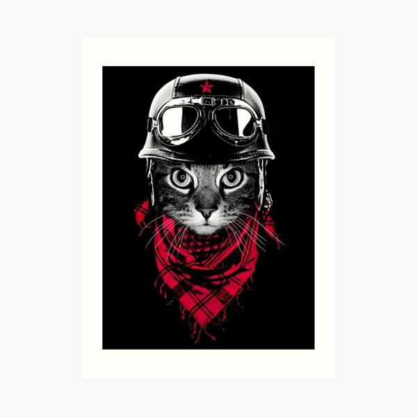 Adventurer Cat Art Print
