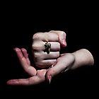 Hands Serie - 009 - packshot 001 by agu-photos