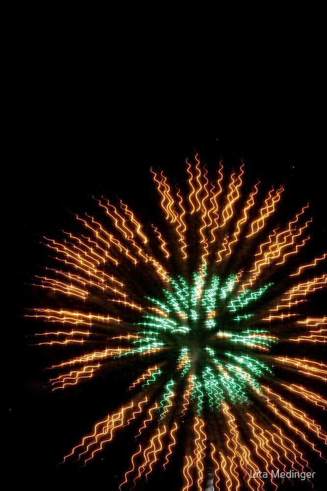 Independence Day 30 by Lita Medinger
