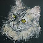Cat II by Ian Scott