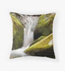 Feng Shui Throw Pillow