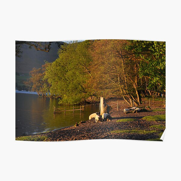 Early morning at Ullswater Poster
