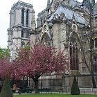 Spring in Paris: Notre-Dame de Paris by Elena Skvortsova