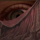 THE EYE BEHIND THE CURTAIN. by Thomas Barker-Detwiler