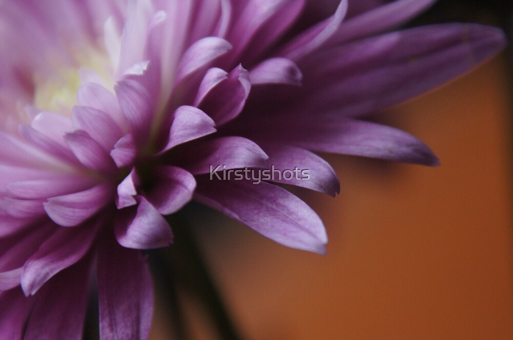Partially by Kirstyshots