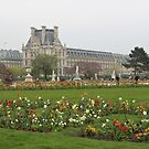 Spring in Paris: Tuileries Garden by Elena Skvortsova