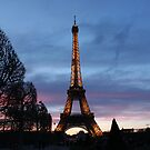 Eiffel Tower at Sunset by Elena Skvortsova