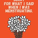 Sorry for what I said when I was menstruating. von Judith Flad