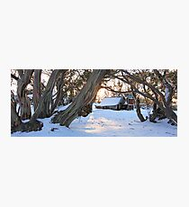 Wallace Hut, Falls Creek, Australia Photographic Print