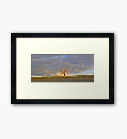 never lonely in light Framed Print