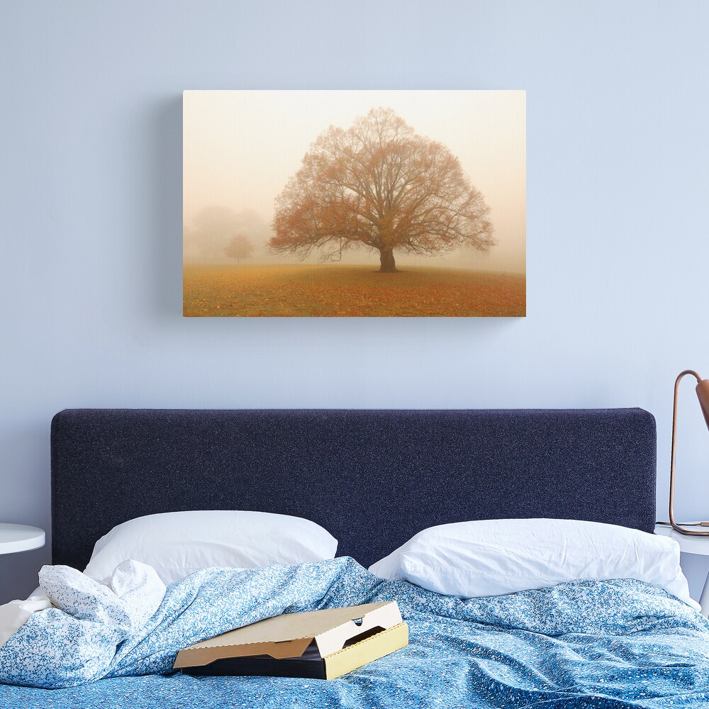 Autumn Fog, Daylesford, Australia Canvas Print