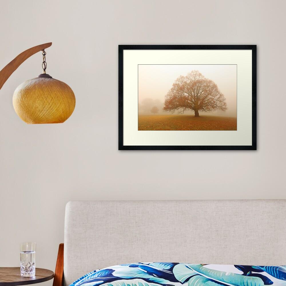Autumn Fog, Daylesford, Australia Framed Art Print