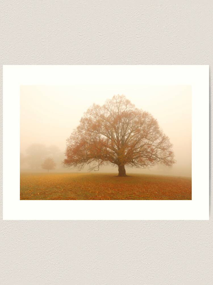 Alternate view of Autumn Fog, Daylesford, Australia Art Print