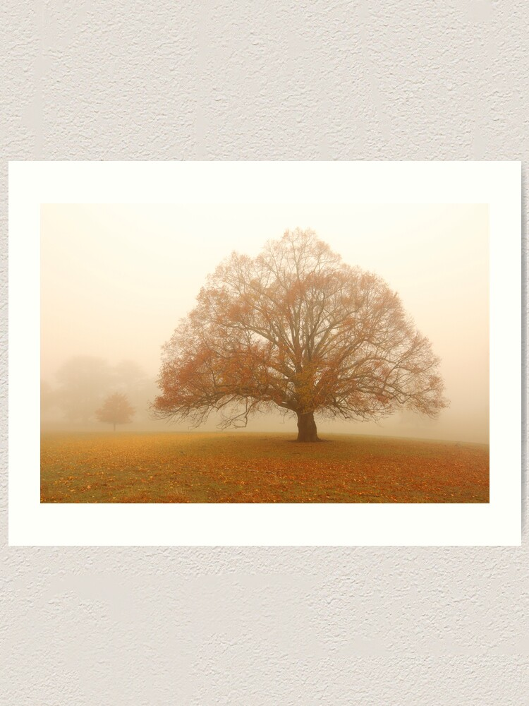 Alternate view of Autumn Fog, Daylesford, Australia Art Print