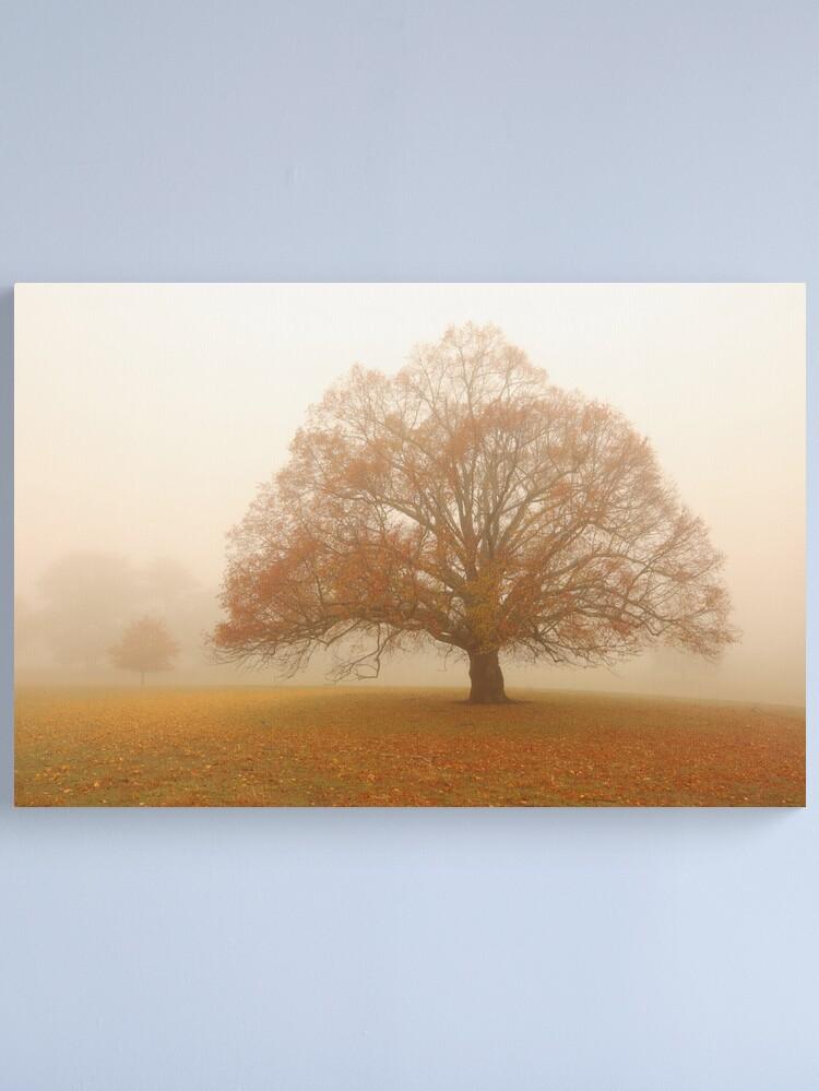 Alternate view of Autumn Fog, Daylesford, Australia Canvas Print