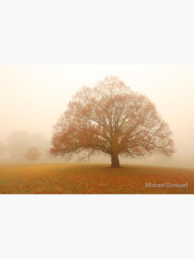 Autumn Fog, Daylesford, Australia by Chockstone
