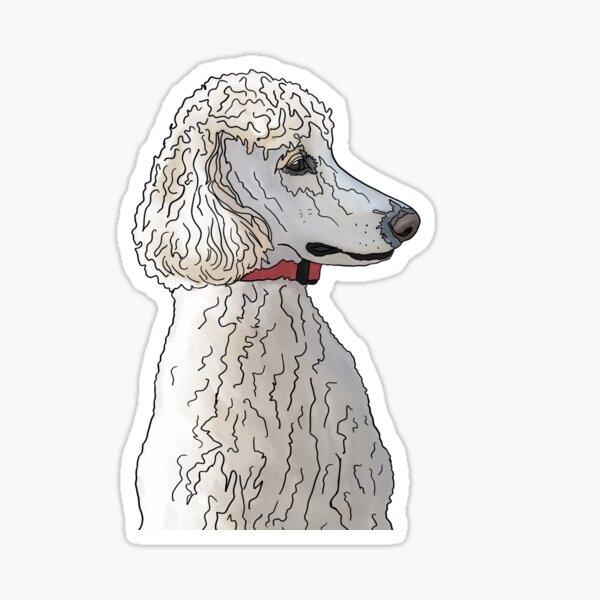 Kyah the Standard Poodle Sticker