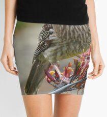 Australian Red Wattle Bird Mini Skirt