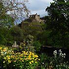 Princes Street Gardens & Edinburgh Castle by wiggyofipswich