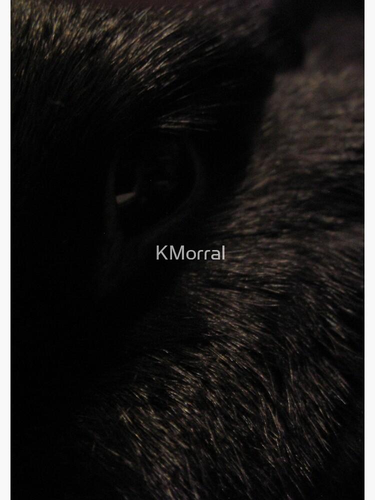 Black Eye by KMorral