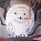 The White Owl is a Night Owl by Pinkham