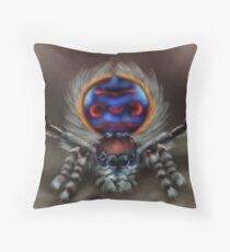 Peacock Spider Throw Pillow