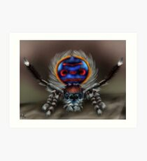 Peacock Spider Art Print