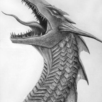 Dragon by tman