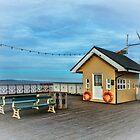 On Penarth Pier by IanWL