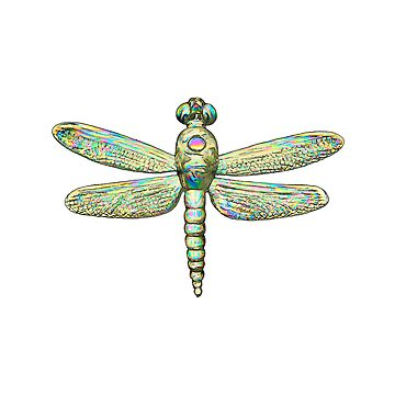 Rainbow Dragonfly by Neboal