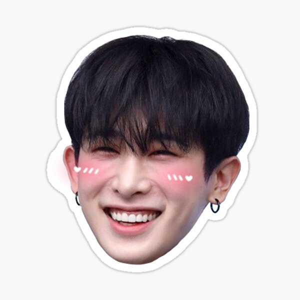 Wonho Monsta X Sticker