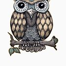 Hoot Owl by Rosemary Scott