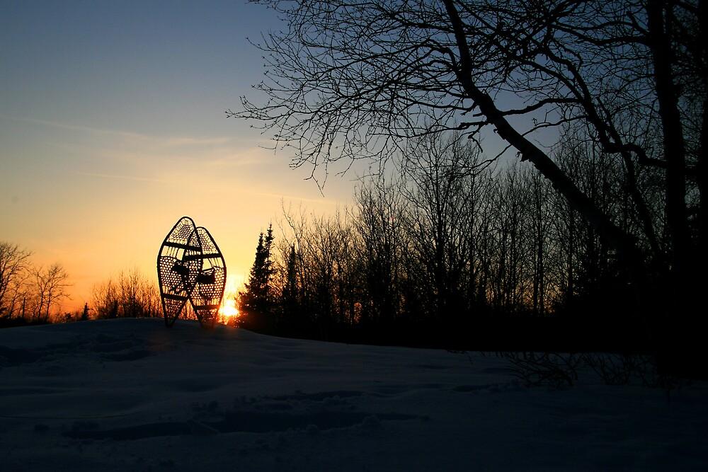 """ Winter Solitude "" by fortner"