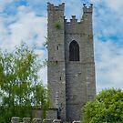 Christ Church Cathedral Tower, Dublin, Ireland by DARRIN ALDRIDGE