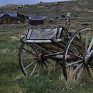 old cart by dagmar luhring