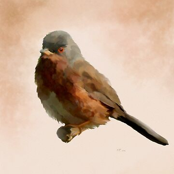 Bird: Dartford Warbler by bamalam-art