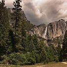 Yosemite Park by danapace