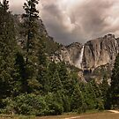 Yosemite Park by dagmar luhring