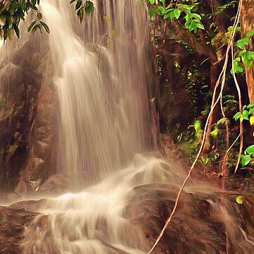 magic rainforest by OzCamera