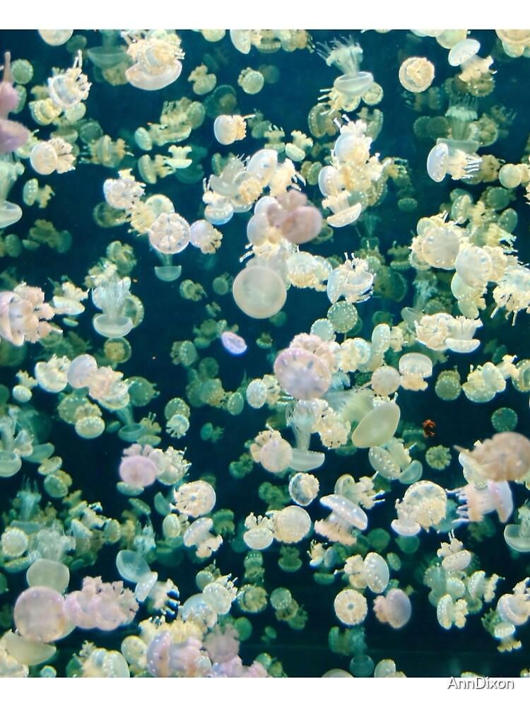 Jellyfish Bloom by AnnDixon