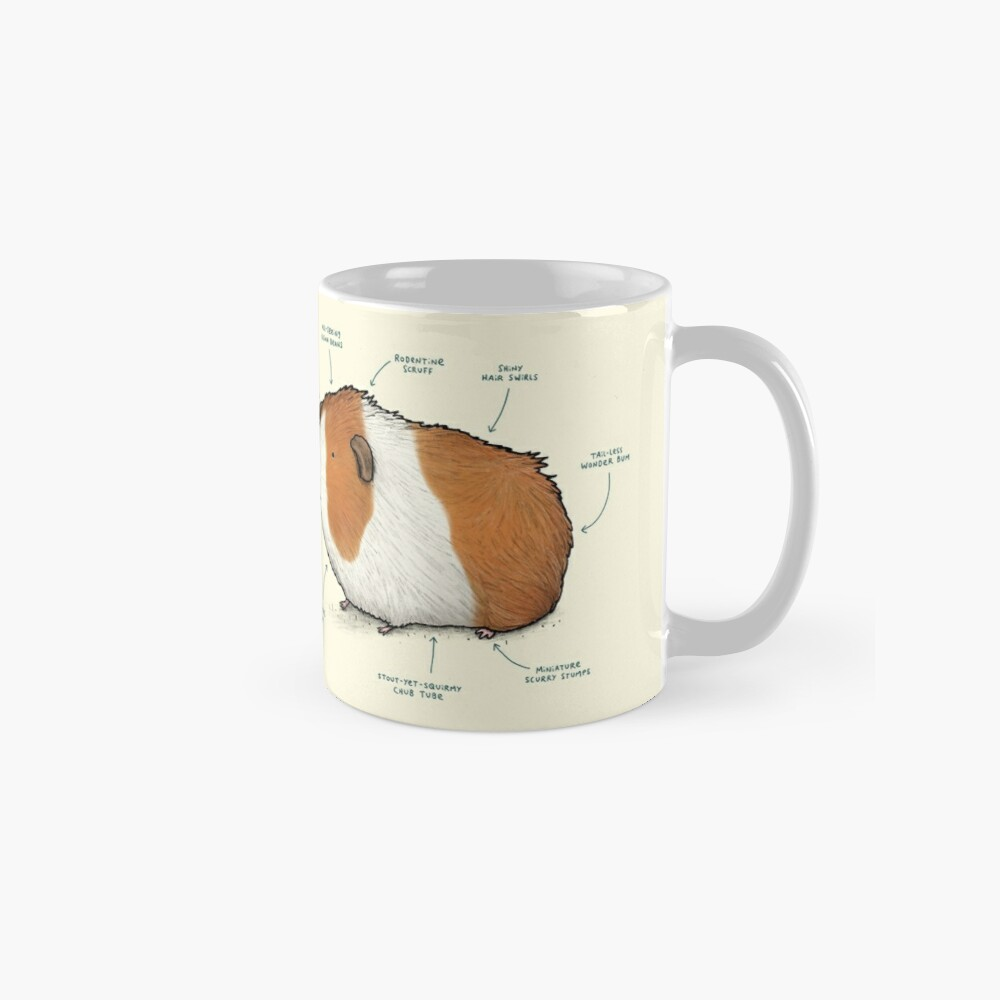 Anatomy of a Guinea Pig Mug
