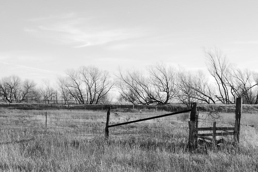 Gate in Kansas Field by Suz Garten