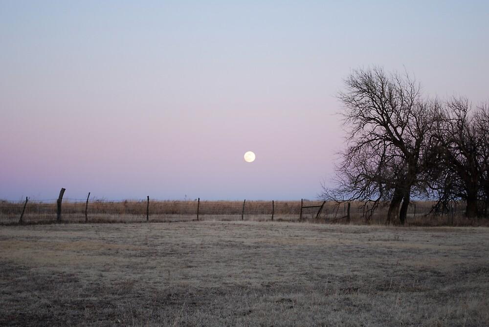 Moonrise in Kansas by Suz Garten