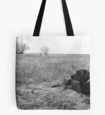 Labrador in Field Tote Bag