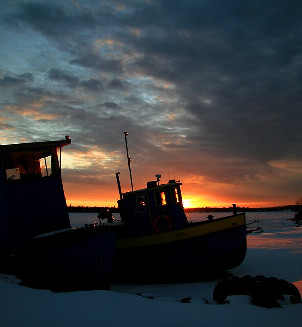 """ Winter Rest "" by fortner"