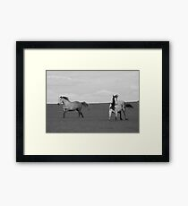 Paint Horse and Stormy Framed Print